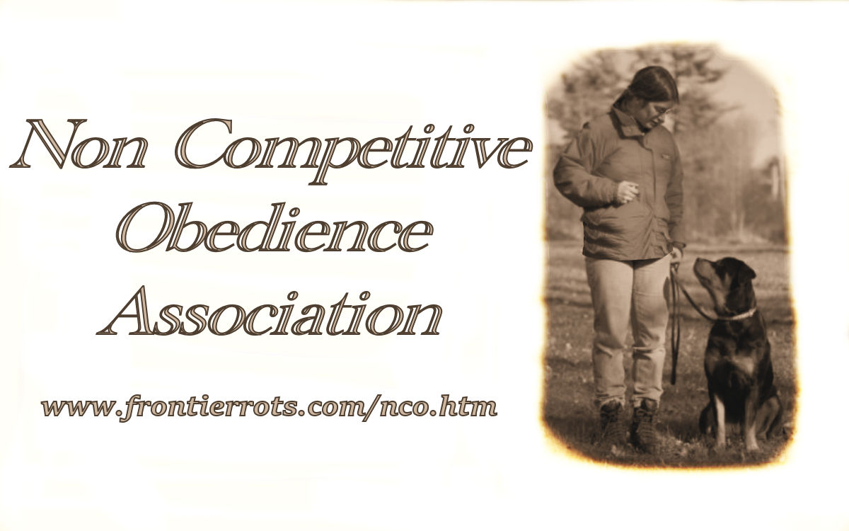 non competitive obedience association